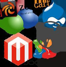 Content management system development